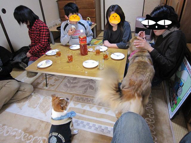 f:id:yasukazu01:20110223223539j:image
