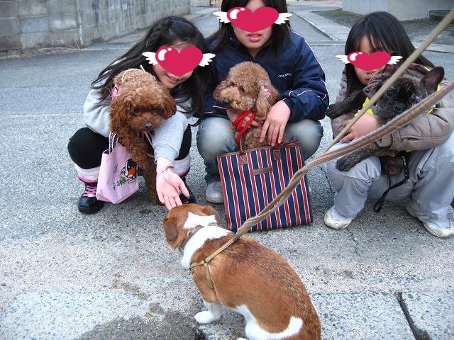 f:id:yasukazu01:20110224220625j:image