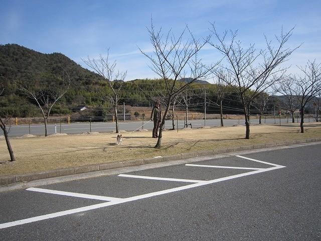 f:id:yasukazu01:20110227201358j:image