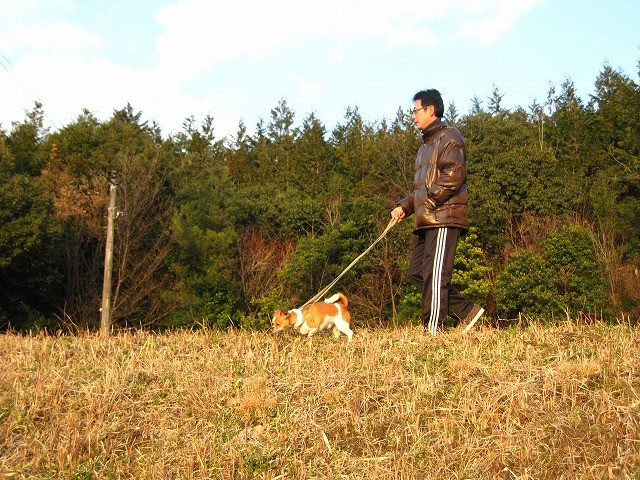 f:id:yasukazu01:20110302211910j:image