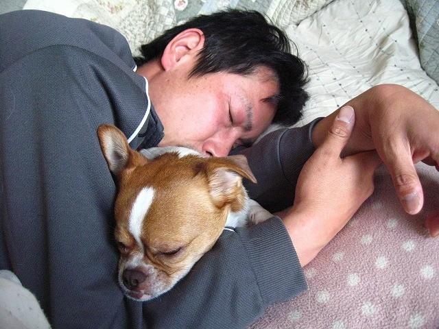 f:id:yasukazu01:20110303204123j:image