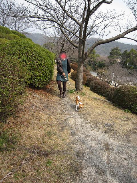 f:id:yasukazu01:20110307180506j:image