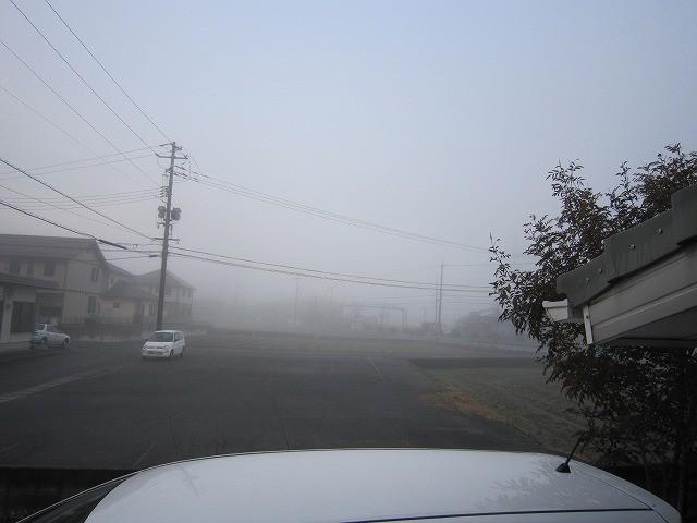 f:id:yasukazu01:20110307210047j:image