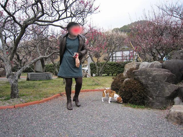 f:id:yasukazu01:20110307215458j:image