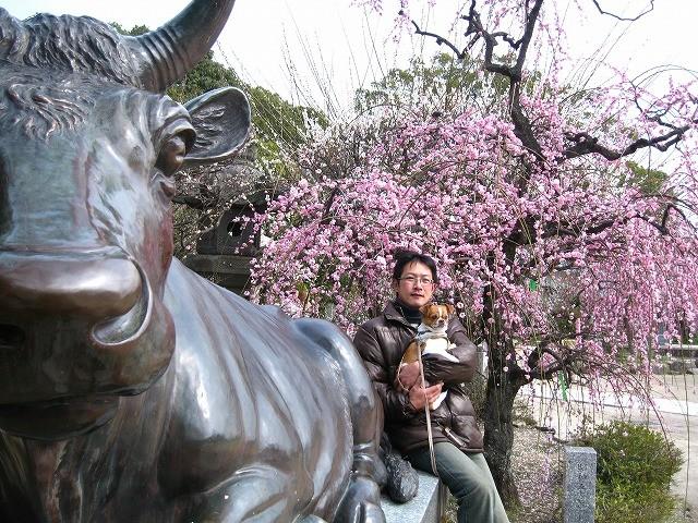 f:id:yasukazu01:20110308221430j:image