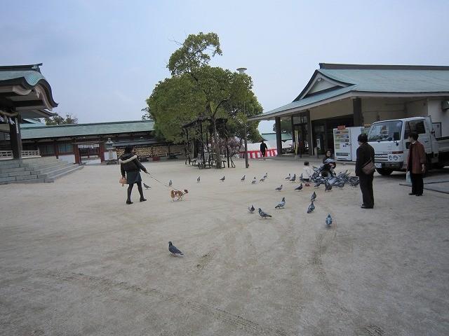 f:id:yasukazu01:20110308222223j:image