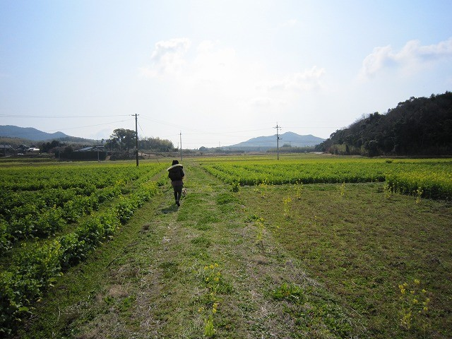 f:id:yasukazu01:20110327201510j:image