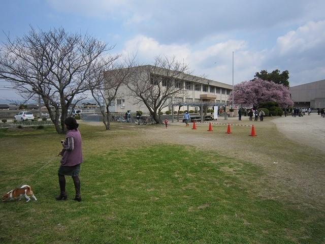 f:id:yasukazu01:20110328215316j:image
