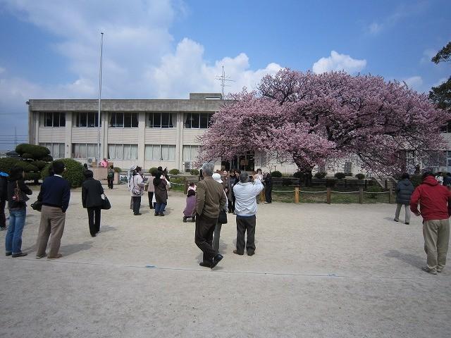 f:id:yasukazu01:20110328215646j:image