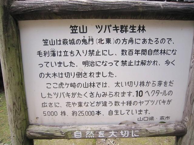 f:id:yasukazu01:20110329205254j:image