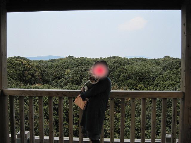 f:id:yasukazu01:20110329210259j:image