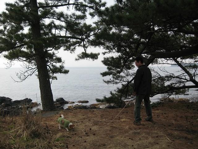 f:id:yasukazu01:20110331220933j:image