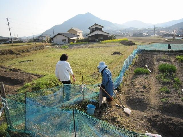 f:id:yasukazu01:20110401202449j:image