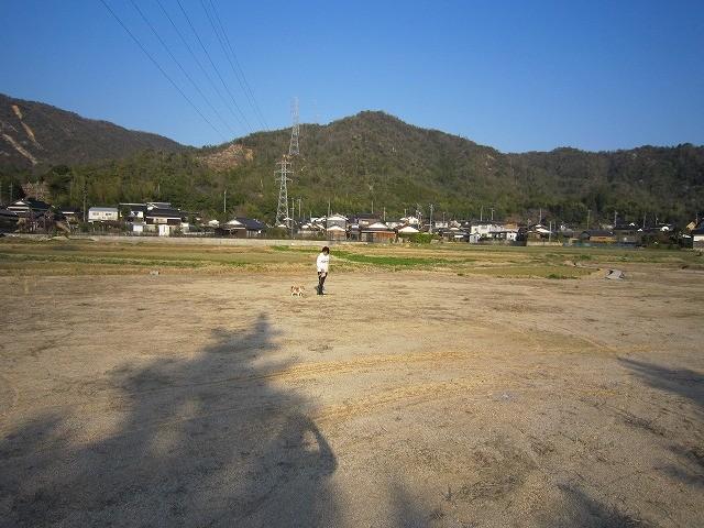 f:id:yasukazu01:20110401202450j:image