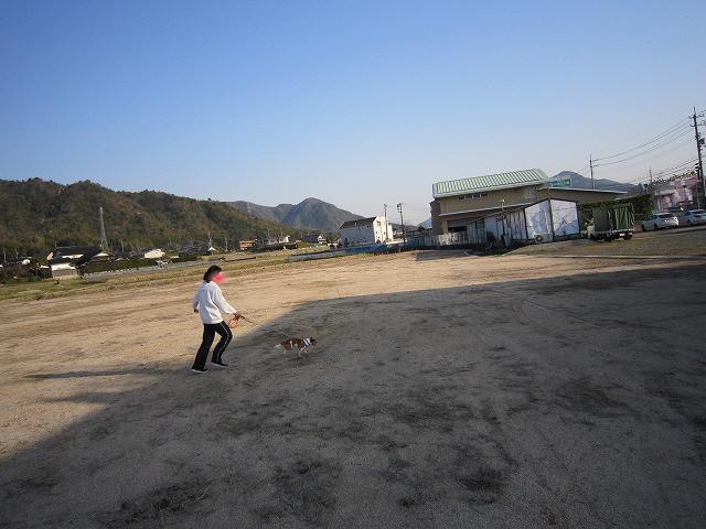 f:id:yasukazu01:20110401202451j:image