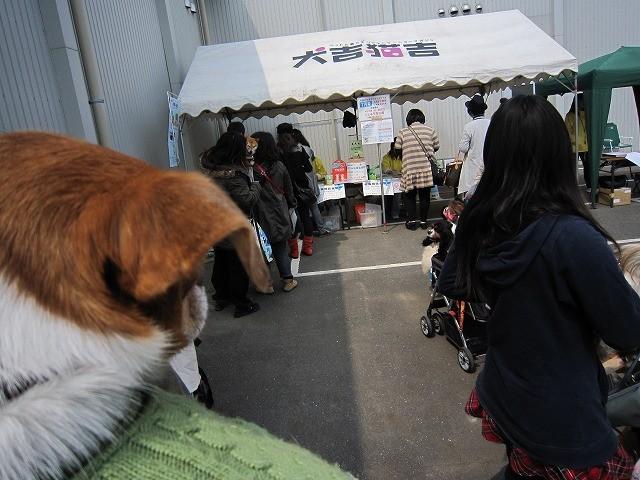 f:id:yasukazu01:20110403210658j:image