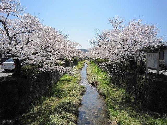 f:id:yasukazu01:20110407203903j:image