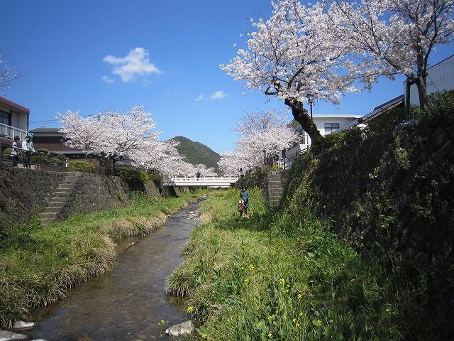 f:id:yasukazu01:20110407203906j:image
