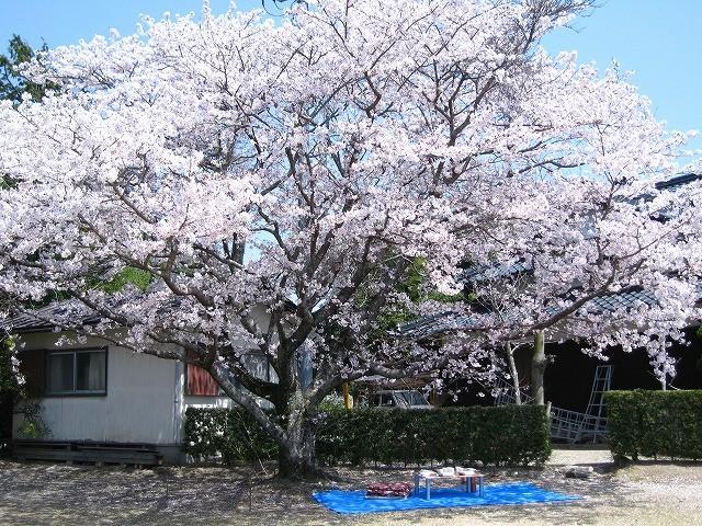 f:id:yasukazu01:20110411223934j:image