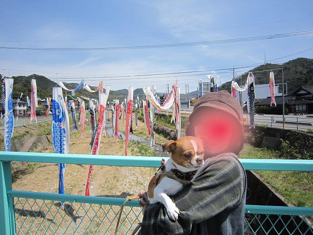 f:id:yasukazu01:20110417202118j:image