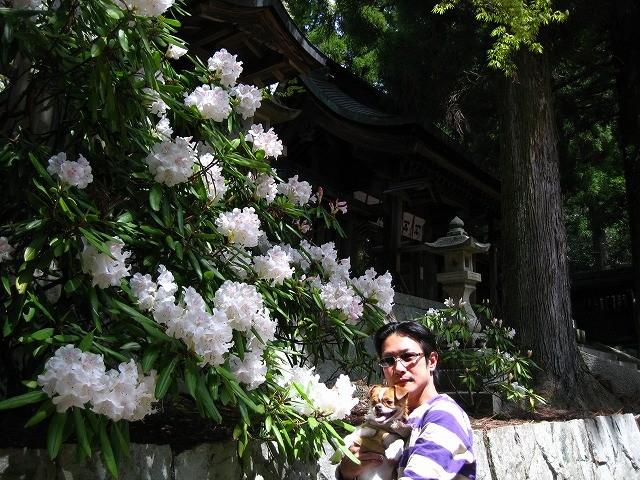 f:id:yasukazu01:20110418220647j:image