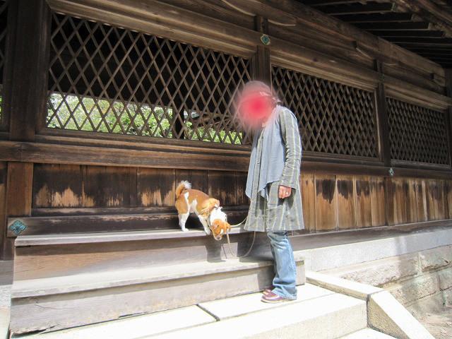 f:id:yasukazu01:20110418220648j:image
