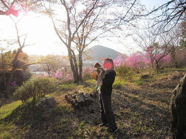 f:id:yasukazu01:20110419205937j:image