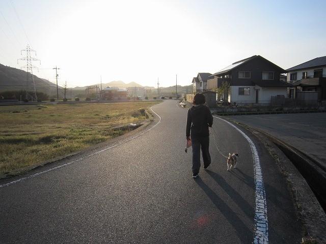 f:id:yasukazu01:20110419205939j:image
