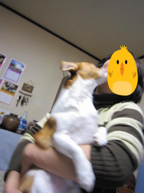 f:id:yasukazu01:20110422204921j:image