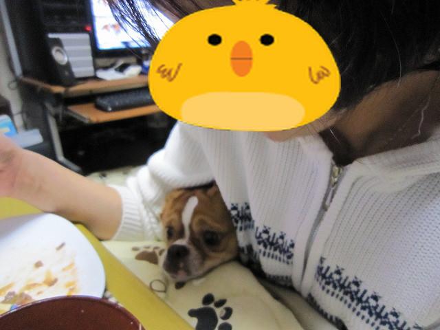 f:id:yasukazu01:20110422212051j:image