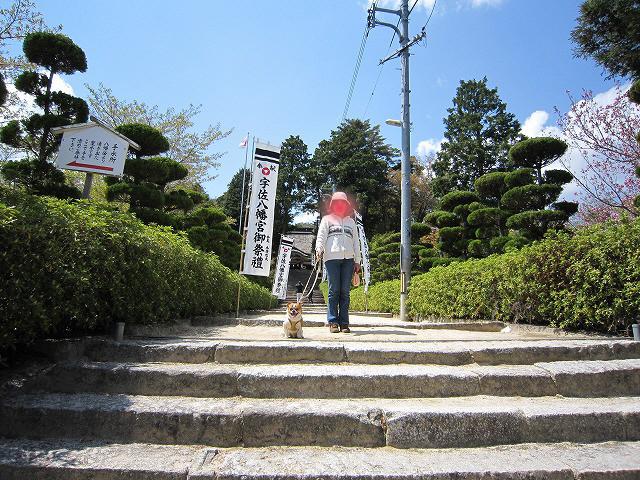 f:id:yasukazu01:20110425203105j:image