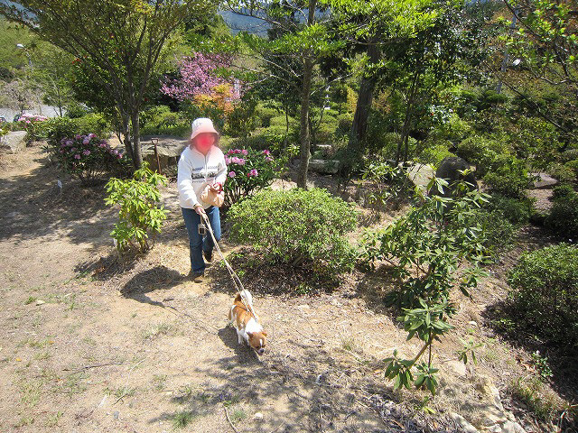f:id:yasukazu01:20110425205927j:image