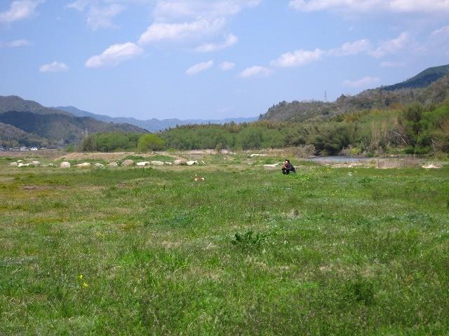 f:id:yasukazu01:20110426215009j:image
