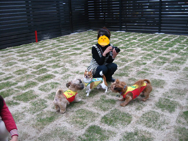 f:id:yasukazu01:20110504233348j:image