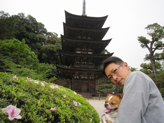 f:id:yasukazu01:20110505075350j:image