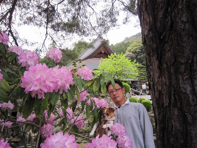 f:id:yasukazu01:20110505075522j:image