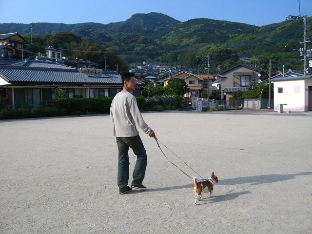 f:id:yasukazu01:20110508200620j:image