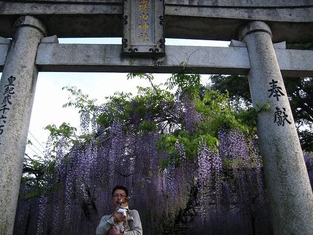 f:id:yasukazu01:20110508201141j:image