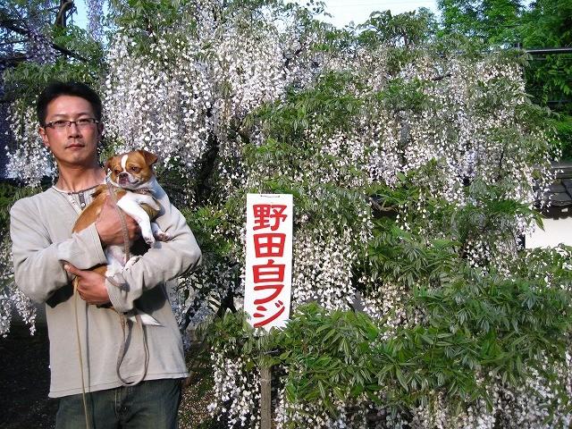 f:id:yasukazu01:20110508202804j:image