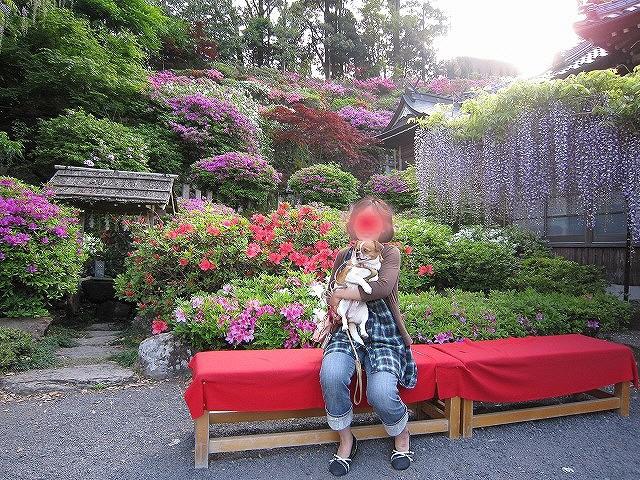 f:id:yasukazu01:20110508203341j:image