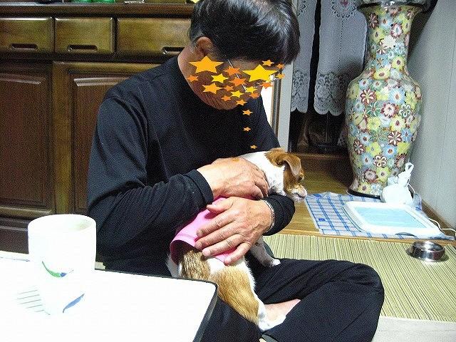 f:id:yasukazu01:20110509213456j:image