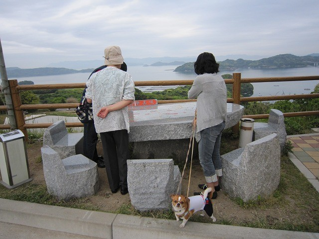 f:id:yasukazu01:20110510220527j:image