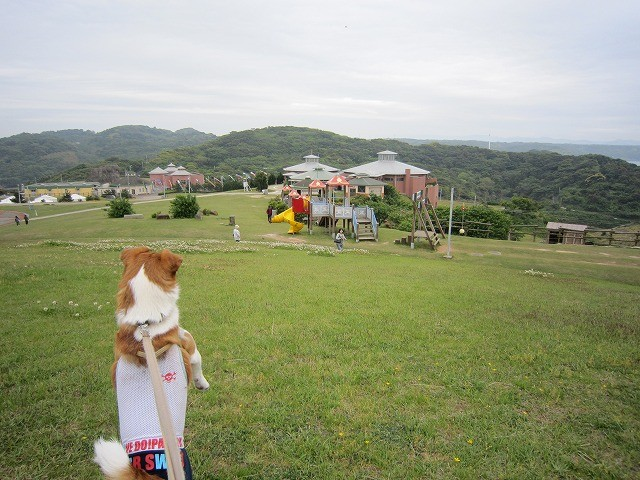 f:id:yasukazu01:20110511220341j:image