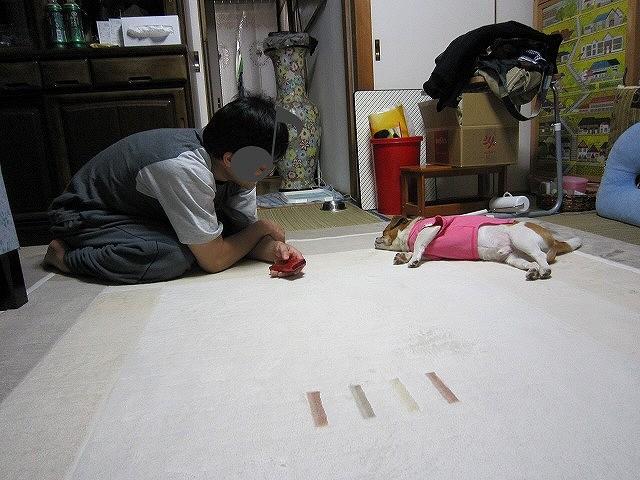 f:id:yasukazu01:20110512215411j:image