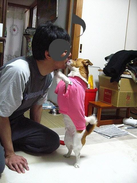 f:id:yasukazu01:20110512215412j:image
