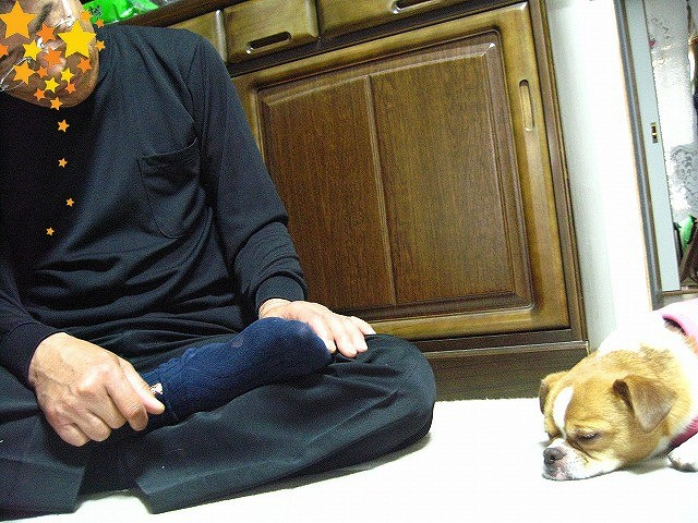 f:id:yasukazu01:20110513211451j:image