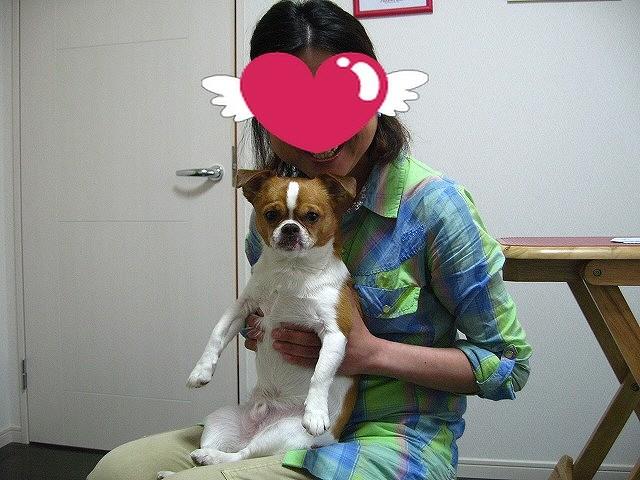 f:id:yasukazu01:20110516211841j:image