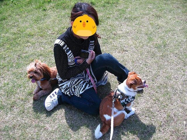 f:id:yasukazu01:20110516221521j:image