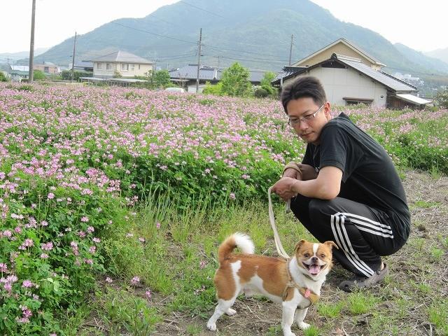 f:id:yasukazu01:20110517215319j:image