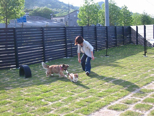 f:id:yasukazu01:20110518222729j:image